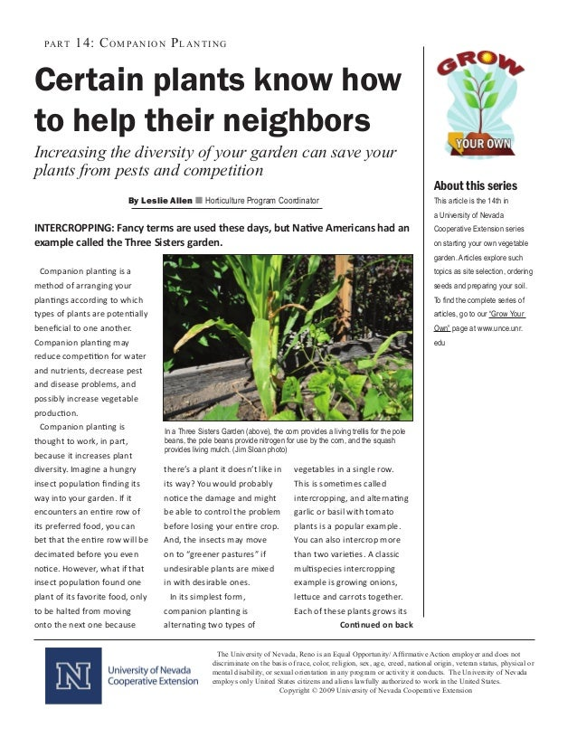 Companion Planting: Certain Plants Know How to Help Their Neighbors - University of Nevada