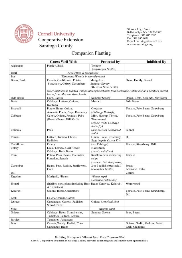 Companion Planting Chart - Saratoga County, New York - Cornell University