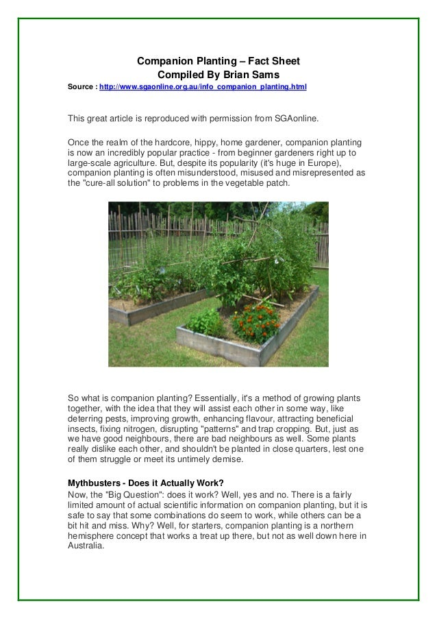 Companion Planting – Fact Sheet                     Compiled By Brian SamsSource : http://www.sgaonline.org.au/info_compan...