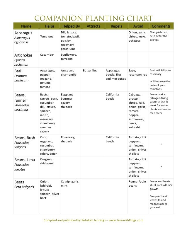 COMPANION PLANTING CHART     Name           Helps              Helped By        Attracts        Repels           Avoid    ...