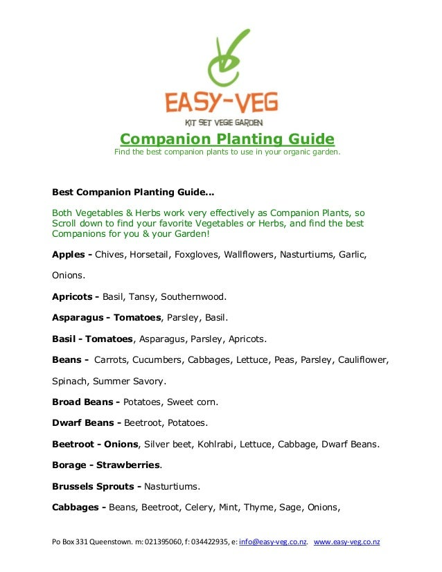 Companion Planting Guide: Find the Best Companion Plants to Use in Your Organic Garden - New Zealand