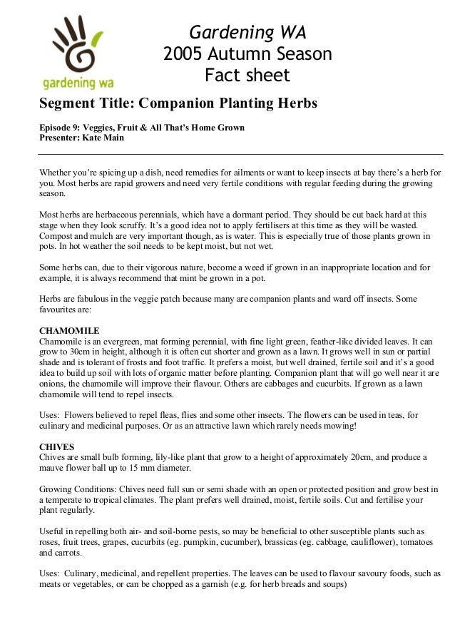 Companion Planting Herbs, Autumn Season - Gardening Western Australia