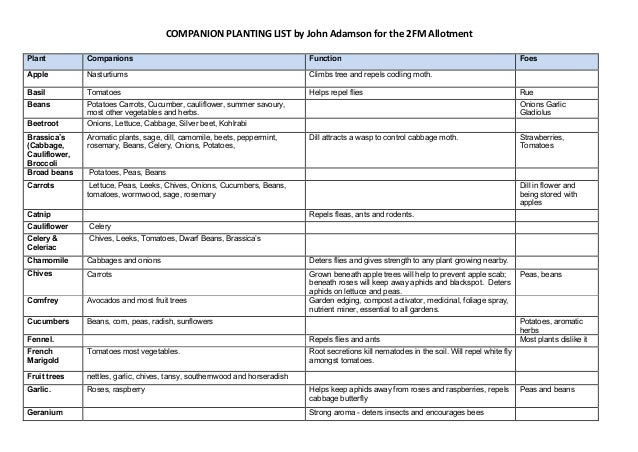 COMPANION PLANTING LIST by John Adamson for the 2FM AllotmentPlant          Companions                                    ...