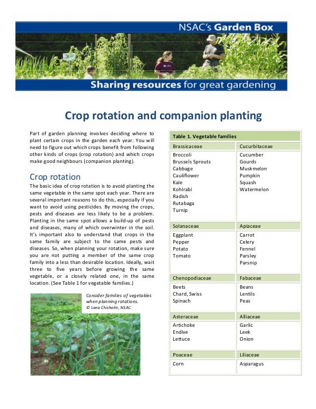 Crop Rotation and Companion Planting - Nova Scotia Agricultural College