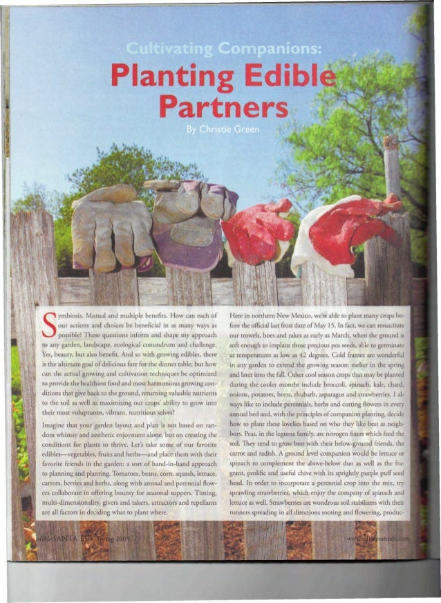 Cultivating Companions: Planting Edible Partners - Getdowntoearth