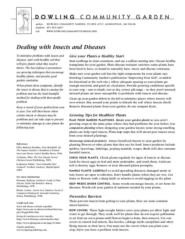 Dealing with Insects and Diseases - Dowling Community Garden, Minneapolis