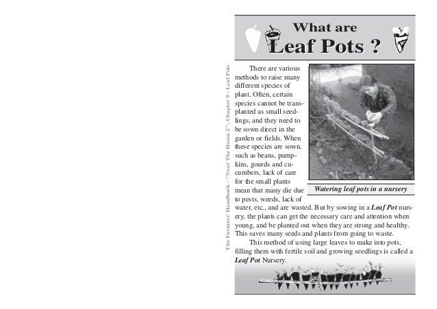 Leaf Pots Gardening