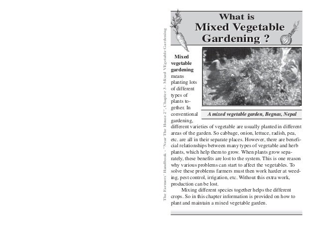 Mixed Vegetable Gardening - Permaculturenews