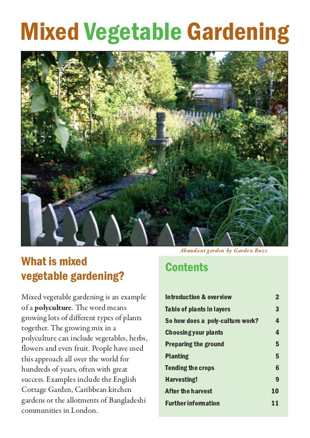 Mixed Vegetable Gardening - PermacultureUk