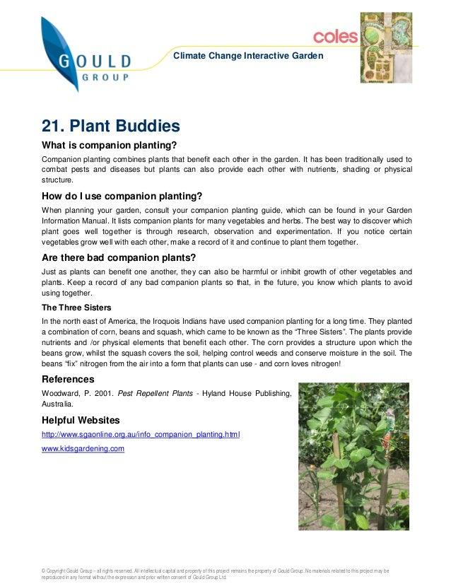 Climate Change Interactive Garden21. Plant BuddiesWhat is companion planting?Companion planting combines plants that benef...