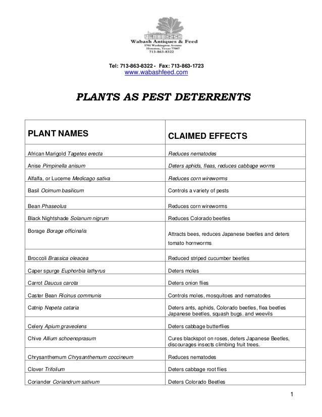 Plants as Pest Deterrents