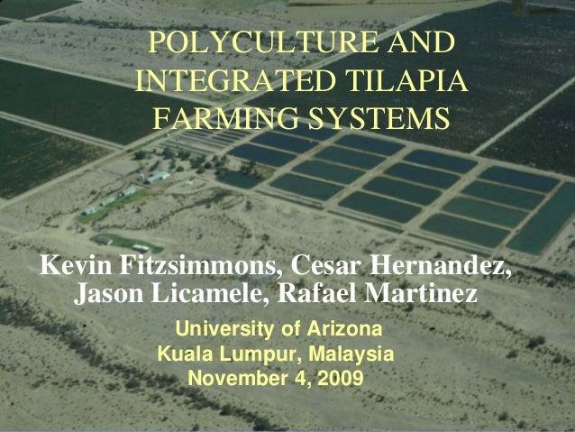 POLYCULTURE AND       INTEGRATED TILAPIA        FARMING SYSTEMSKevin Fitzsimmons, Cesar Hernandez,  Jason Licamele, Rafael...