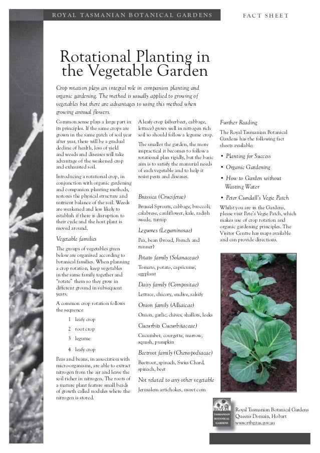 Rotational Planting and Companion Planting Methods in the Vegetable Garden - Royal Tasmanian Botanical Gardens