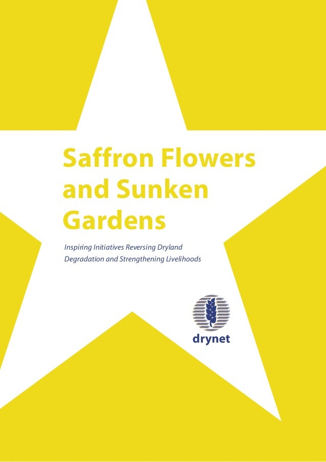 Saffron Flowersand SunkenGardensInspiring Initiatives Reversing DrylandDegradation and Strengthening Livelihoods
