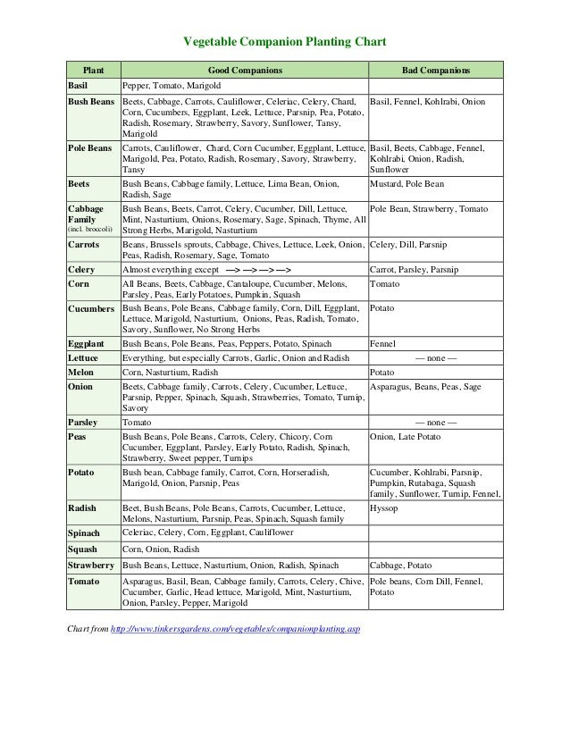 Vegetable Companion Planting Chart - Theculvers