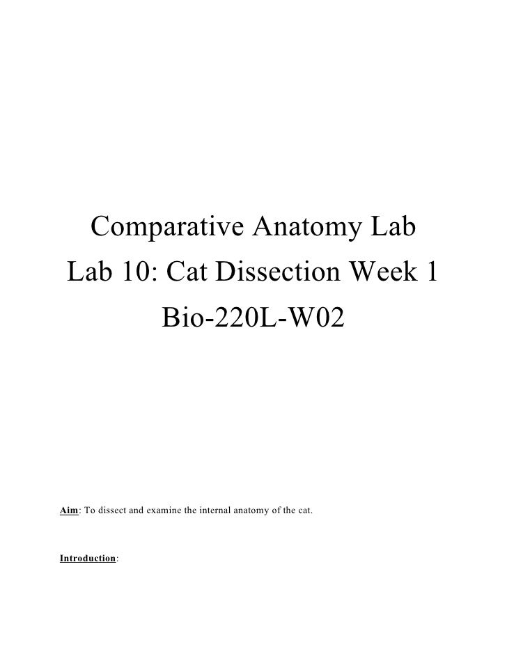 Comparative Anatomy Lab Lab 10: Cat Dissection Week 1                        Bio-220L-W02Aim: To dissect and examine the i...