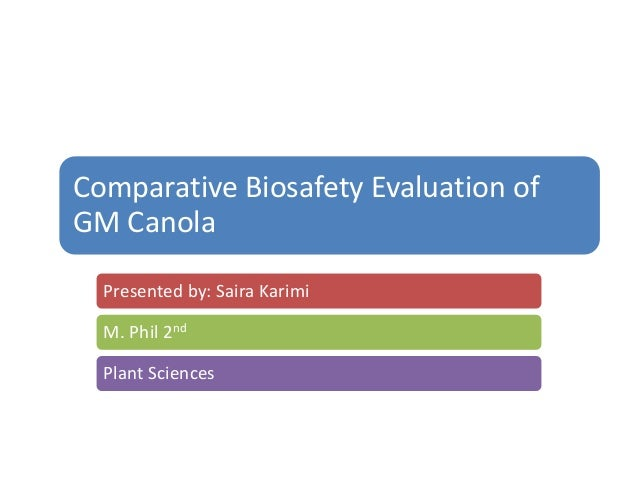 Comparative Biosafety Evaluation ofGM Canola  Presented by: Saira Karimi  M. Phil 2nd  Plant Sciences
