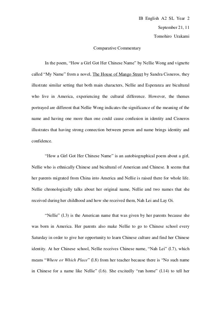 Illegal Immigration Essay Thesis Statement