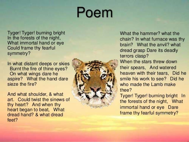 a comparison of the poems the lamb and the tyger by william blake Technical analysis of the tyger literary devices and the technique of william blake skip to navigation skip to content  william blake: the lamb,.