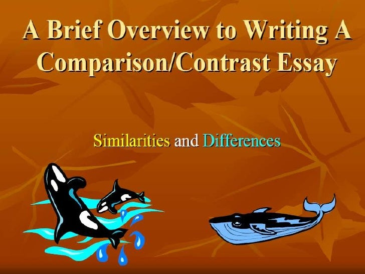 In which pattern of compare and contrast essay organization would you
