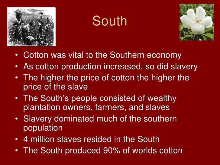 north cotton thesis Chapter eleven the south and slavery how did cotton affect the economy of the north cotton culture: have one student write the thesis.