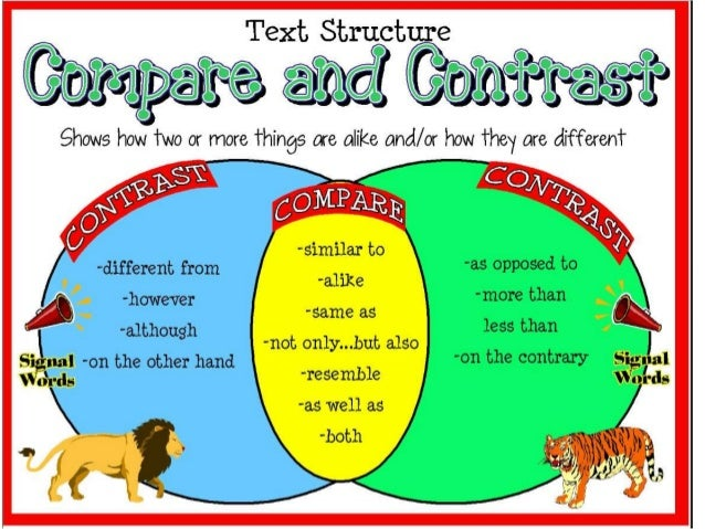 How to make a compare and contrast cats and dogs
