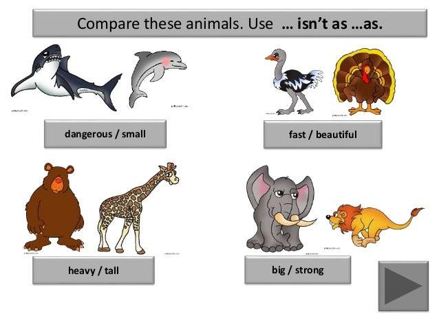 Comparison Of Adjective