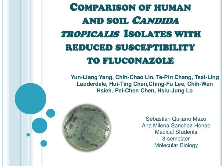 COMPARISON OF HUMAN     AND SOIL          CANDIDATROPICALIS ISOLATES WITHREDUCED SUSCEPTIBILITY   TO FLUCONAZOLE Yun-Liang...