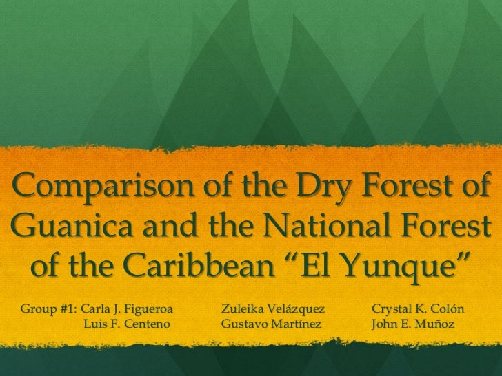 """Comparison of the Dry Forest ofGuanica and the National Forest of the Caribbean """"El Yunque""""Group #1: Carla J. Figueroa   Z..."""