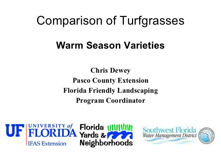 Comparison of Turfgrasses <ul><li>Warm Season Varieties </li></ul><ul><li>Chris Dewey </li></ul><ul><li>Pasco County Exten...