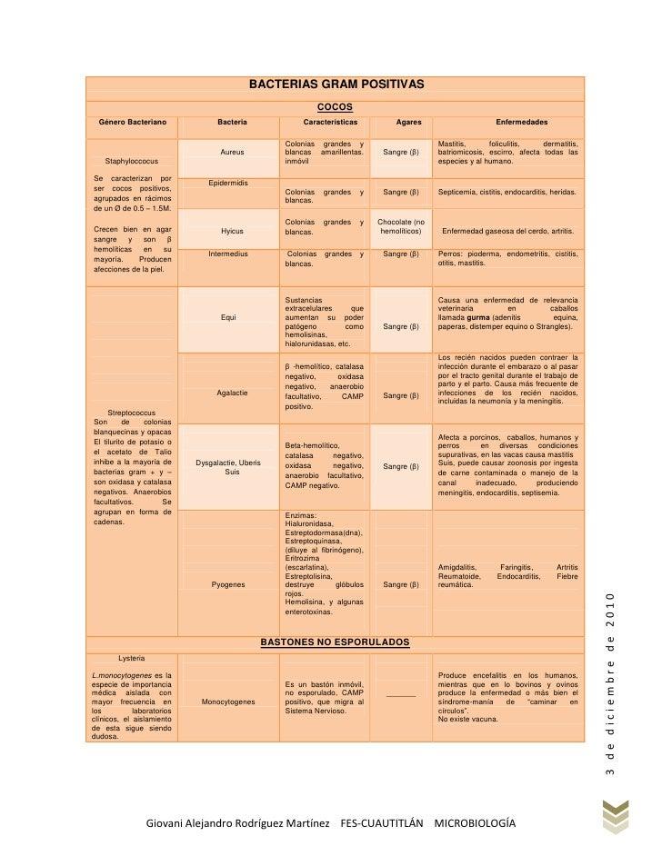 BACTERIAS GRAM POSITIVAS                                                             COCOS  Género Bacteriano             ...
