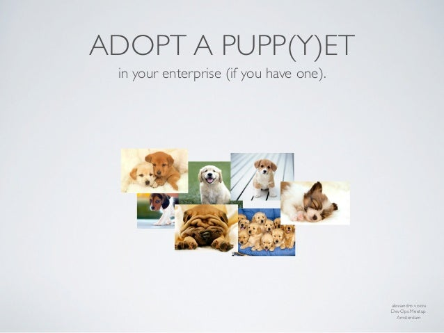 ADOPT A PUPP(Y)ET in your enterprise (if you have one).                                         alessandro vozza          ...