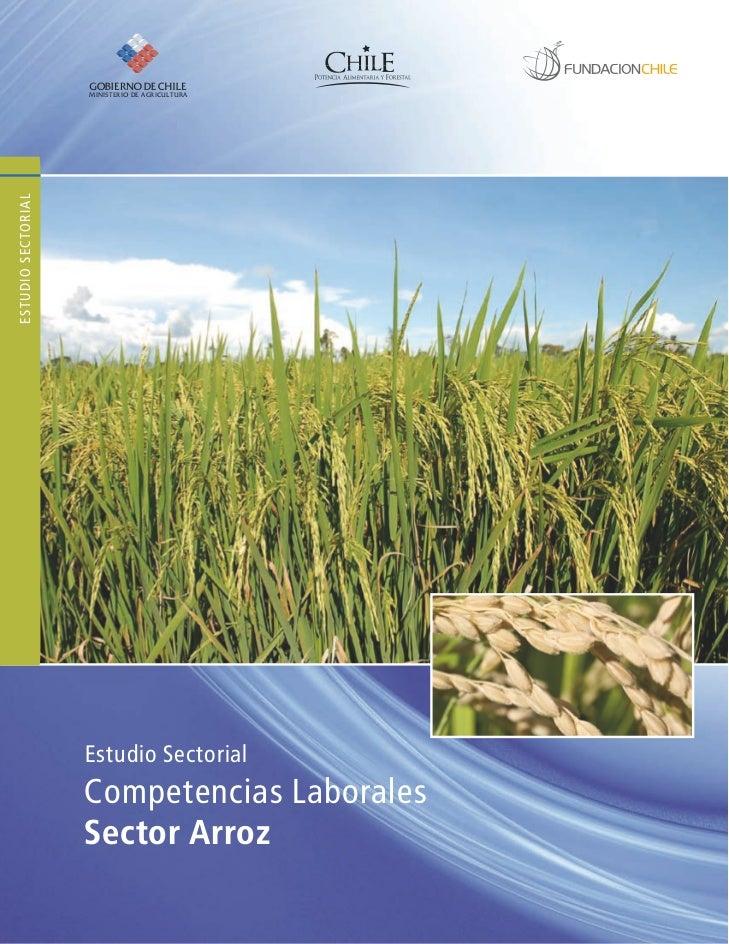 Estudio Sectorial Competencias Laborales Sector Arroz