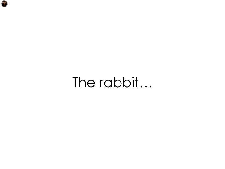 The rabbit…