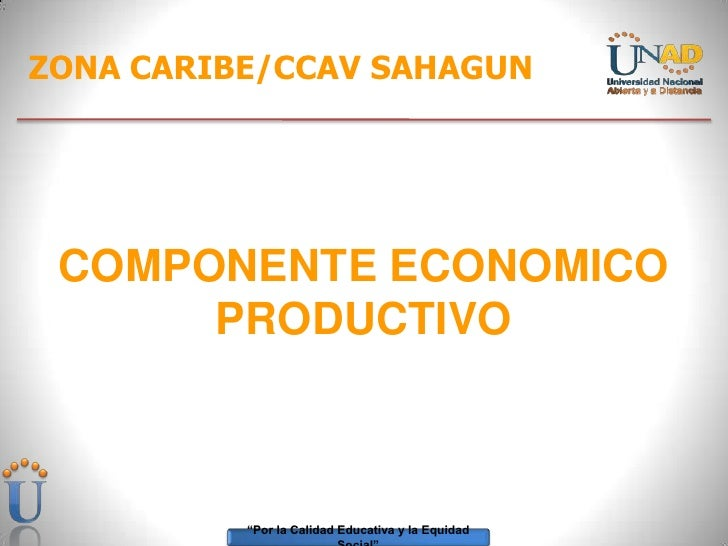 ZONA CARIBE/CCAV SAHAGUN<br />COMPONENTE ECONOMICO PRODUCTIVO<br />