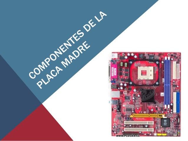 LA PLACA MADRE • tarjeta de circuito impreso a la que se conectan las demás partes de la computadora • Tiene instalados un...