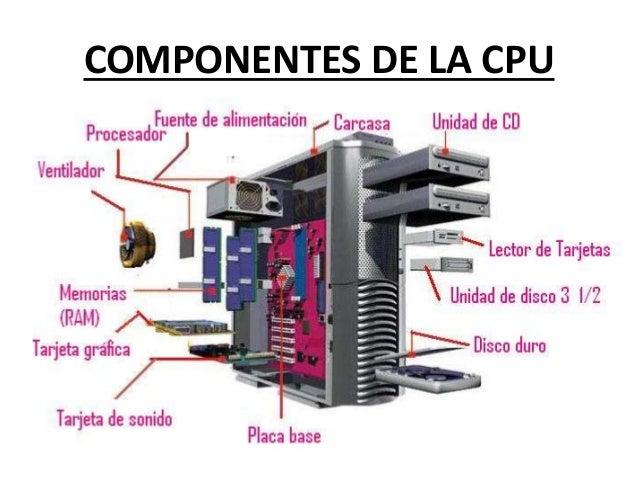 1 Componentes B Sicos Beatriztico4a