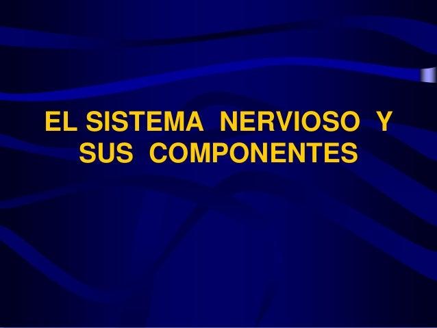 EL SISTEMA NERVIOSO Y SUS COMPONENTES