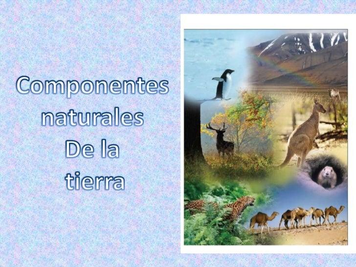 Componentes <br />naturales <br />De la <br />tierra<br />
