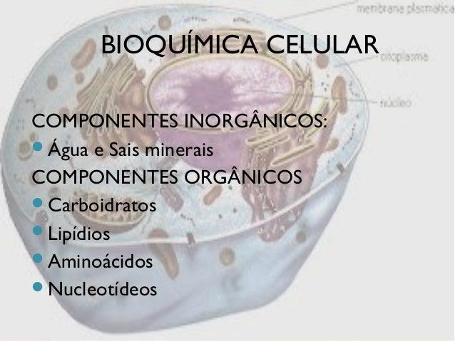 Componentes quimicos das celulas