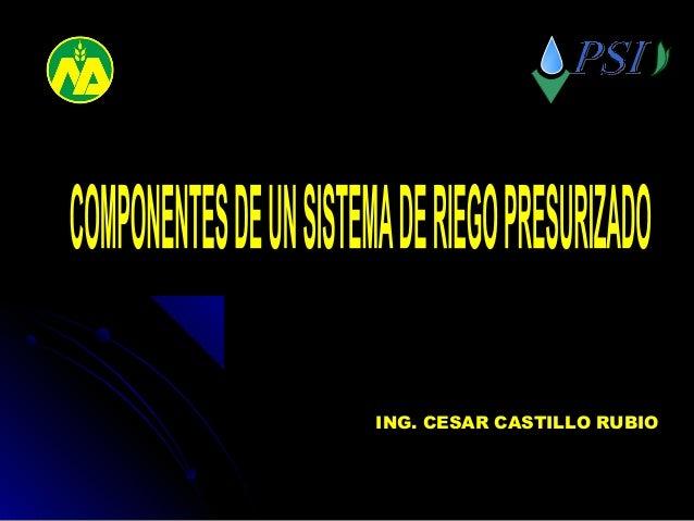 ING. CESAR CASTILLO RUBIO ESPECIALISTA EN DISEÑO Y O&M DE SISTEMAS DE RIEGO TECNIFICADO OGZN TRUJILLO PROGRAMA SUBSECTORIA...