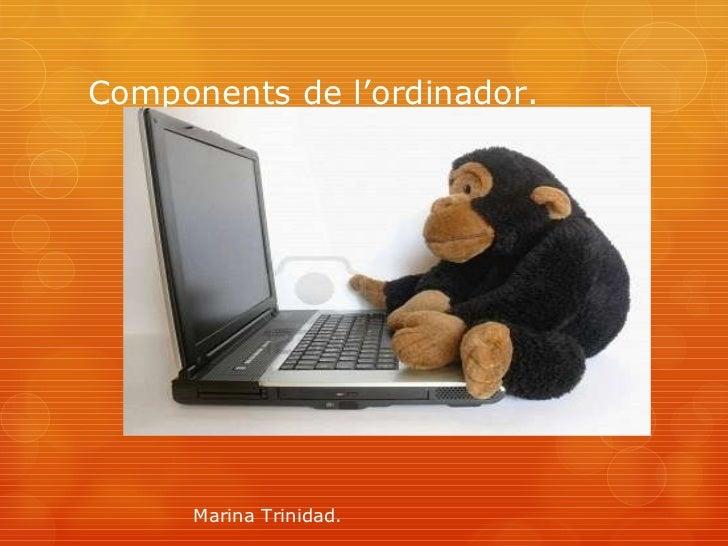 Components de l'ordinador. Marina Trinidad.