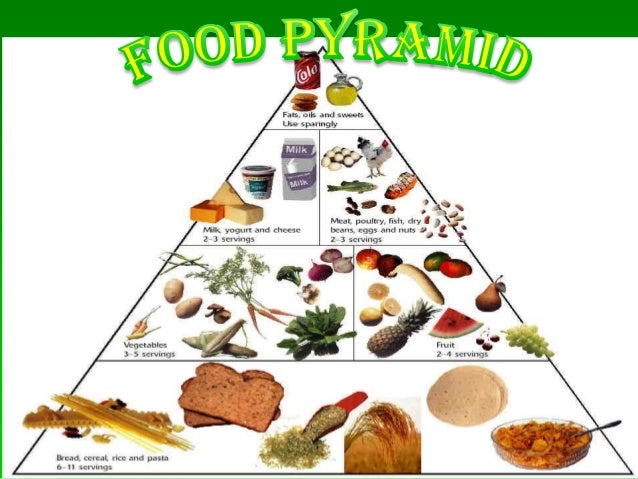 Components of food class iv for Cuisine examples