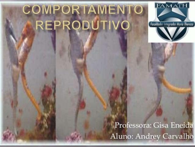 Professora: Gisa EneidaAluno: Andrey Carvalho