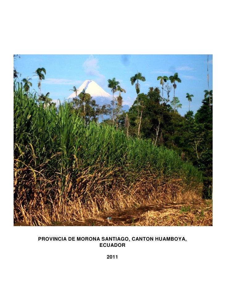 Comportamiento agro industrial en la cepa soca 1 de genotipos de caña de azúcar (c 1051 73, c 132-81, c 8751 y b 7274 a 1000 m.s.n.m) introducidos en la provincia de morona santiago, cantón huamboya, ecuador