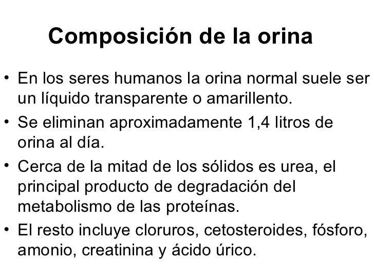 Composición de la orina   <ul><li>En los seres humanos la orina normal suele ser un líquido transparente o amarillento.  ...