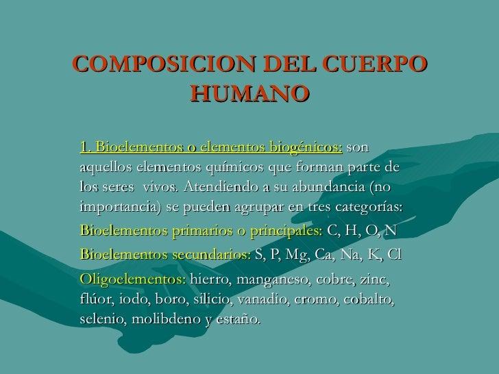 Composicion Del Ser Humano 1