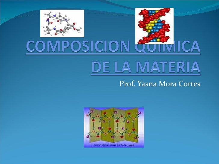 Prof. Yasna Mora Cortes