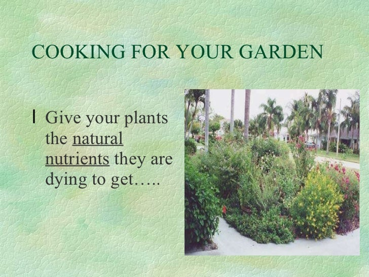 COOKING FOR YOUR GARDEN <ul><li>Give your plants the  natural nutrients  they are dying to get….. </li></ul>Levitra  50mg ...