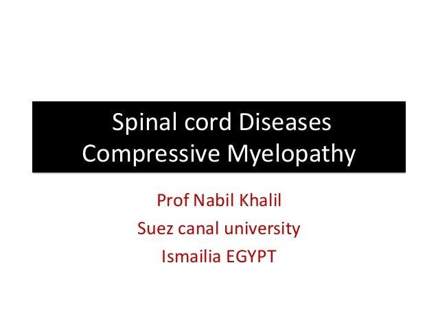 Spinal cord Diseases Compressive Myelopathy Prof Nabil Khalil Suez canal university Ismailia EGYPT